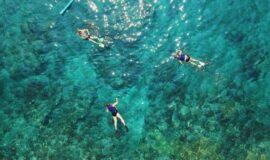 Toto-Travel-Boat-Trip-Kornati-Archipelago-Boat-Trip-5-3