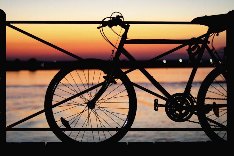 Toto Travel Rent A Bike 1