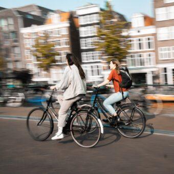 Toto-Travel-Rent-A-Bike-2