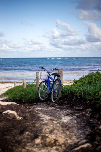 Toto Travel Rent A Bike 4