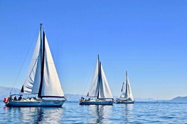 Toto Travel Sailing Trips Half Day Sailing 1
