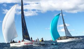 Toto Travel Sailing Trips Half Day Sailing 4