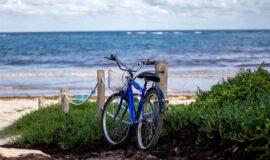 Toto-Travel-Rent-A-Bike-4